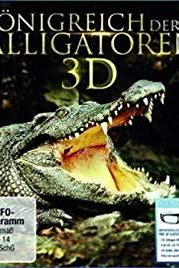 Alligator Kingdom 3D