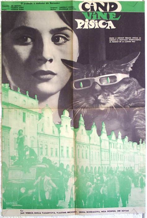 Streamline | The Official Filmstruck Blog – Cinematic Cat ...