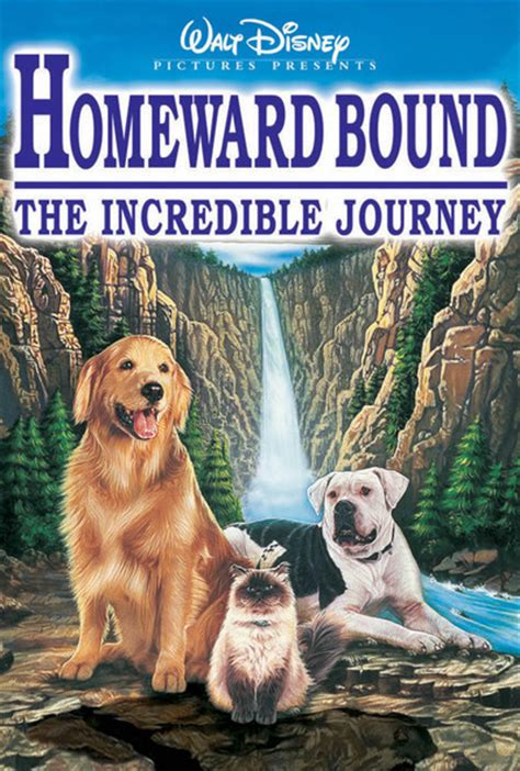 Homeward Bound: The Incredible Journey Movie Review (1993 ...