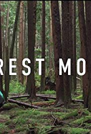 Forest Movie