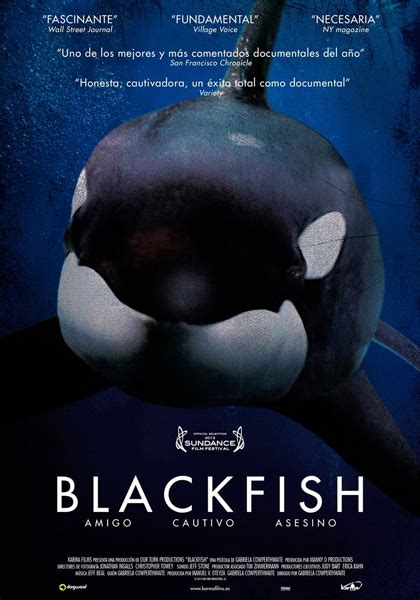 Blackfish (2013) - MYmovies.it